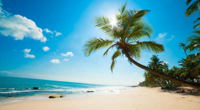 sunny beach mywallpaper.com