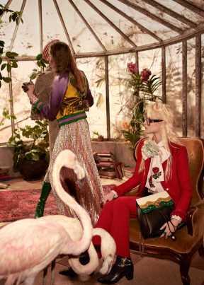 Gucci pre-fall 2016 campaign