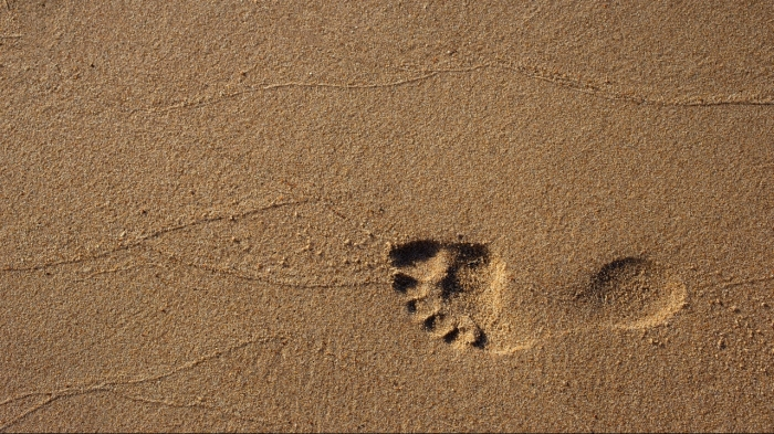 beach-footprint-footstep-1527828